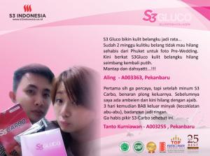 S3 gluco
